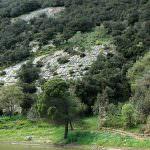 Riserva Naturale Orientata Monte Altesina